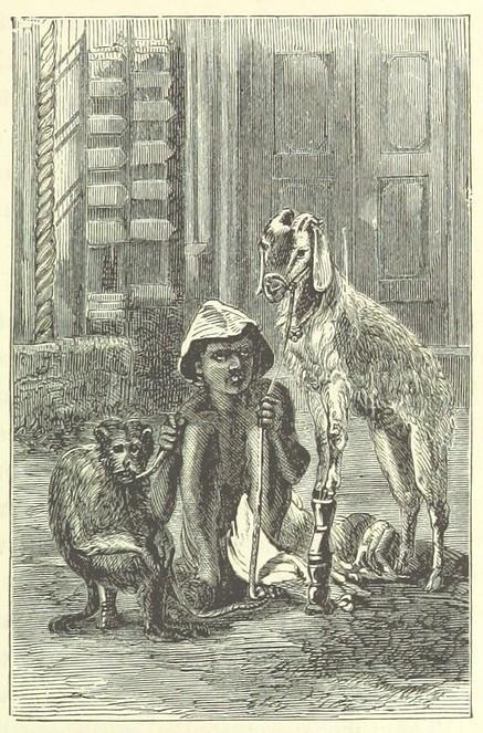 monkey goat conjurer edit